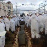 Samaritans passover sacrifice